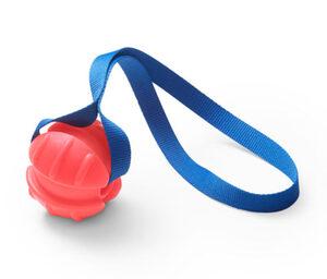 Hunde-Wurfball