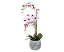 Bild 2 von casa deco Naturgetreue Orchidee im Topf