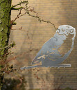 Bild 4 von Illumino Stahl-Baumstecker Glücksvogel Eule, ca. B28,3/H21 cm, rost