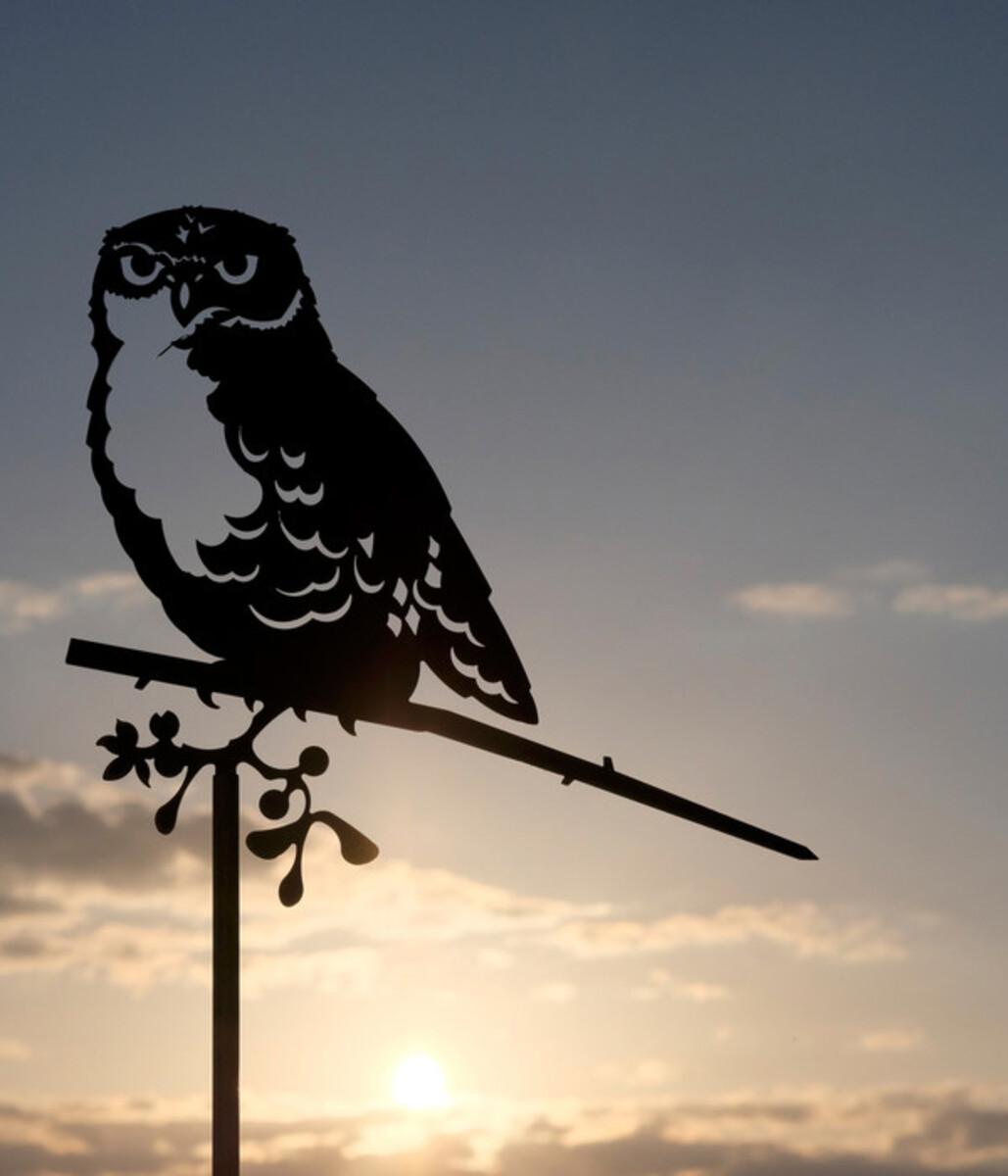 Bild 5 von Illumino Stahl-Baumstecker Glücksvogel Eule, ca. B28,3/H21 cm, rost