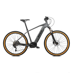 E-Mountainbike 29 Zoll RR 900 Performance CX 500 Wh