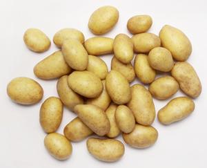 NATUR Lieblinge Speisefrühkartoffeln, festkochend