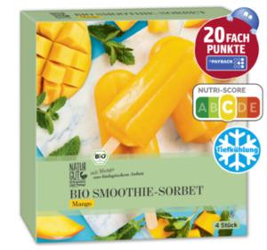 NATURGUT Bio Smoothie-Sorbet Sticks