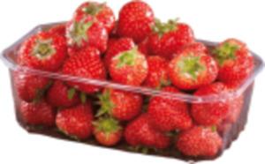 Bauers Beste Erdbeeren