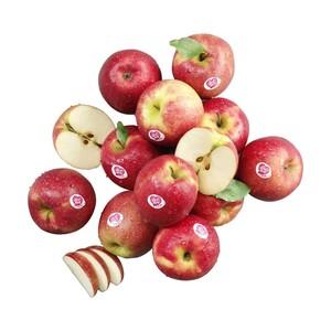 """Chile/Südafrika/Argentinien Tafeläpfel """"Pink Lady"""" Kennzeichnung siehe Etikett, jede 550-g-Packung"""