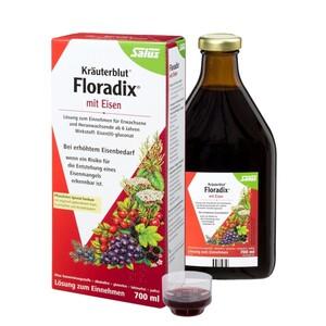 Salus  Kräuterblut Floradix mit Eisen, Tonikum 700 ml