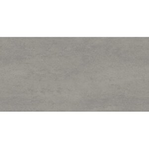 Feinsteinzeug Select Grau matt 30 cm x 60 cm