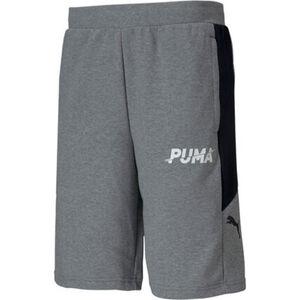 Puma Shorts, lässig, für Herren