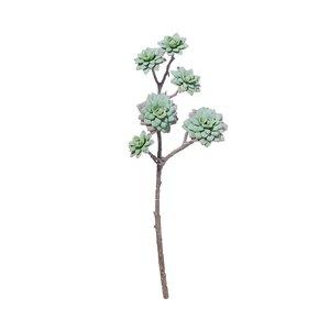 FLORISTA Succulentenzweig Länge 45cm