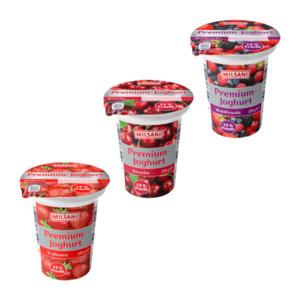 MILSANI     Premium Joghurt