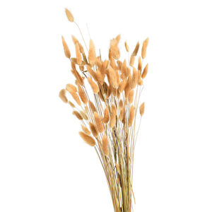 Blumenbündel Samtgras, L:60cm, natur