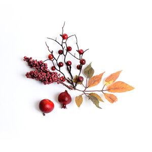Deko-Herbstfrüchte, rot