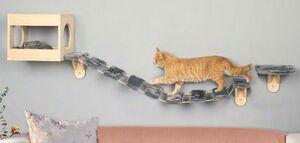 Katzenerlebnis-Set