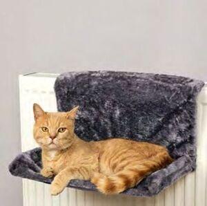 Katzenheizungsliege
