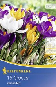 Kiepenkerl Blumenzwiebeln Crocus Groblum. Mix ,  Inhalt: 15 Stück