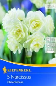 Kiepenkerl Blumenzwiebel Narzisse Cheerfulness ,  Narcissus pseudonarcissus, Inhalt: 5 Stück