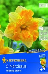 Kiepenkerl Blumenzwiebel Narzisse Blazing Starlet ,  Narcissus x Hybrida, Inhalt: 5 Stück