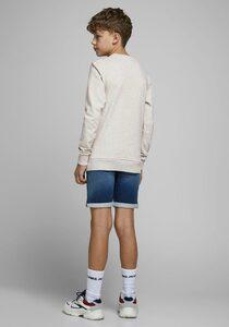 Jack & Jones Junior Sweatshirt »JORTORINO SWEAT CREW NECK«