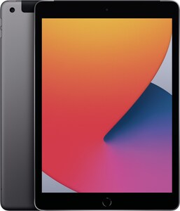 iPad (32GB) WiFi + 4G 8.Generation space grau