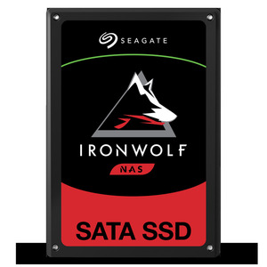 SEAGATE IronWolf 110 1920 GB Festplatte 2.5 Zoll in Schwarz