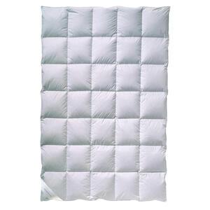 Billerbeck Daunendecke 155/220 cm , Polarstern 80 Mono , Weiß , Textil , 155x220 cm , für Hausstauballergiker geeignet, weich und anschmiegsam , 003279031902