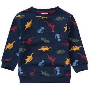 Jungen Sweatshirt mit Dino-Allover