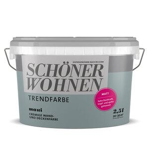"""Schöner Wohnen Farbe              Trendfarbe """"Maui"""", Matt, 2,5 L"""