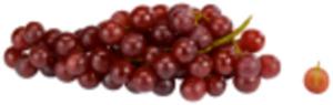 Italien EDEKA Selection Tafeltrauben Italia hell oder Red Globe rot großbeerig