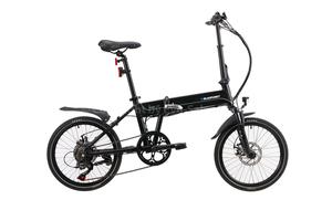 BLAUPUNKT Falt-E-Bike Carl 290 inkl. Fahrradtasche
