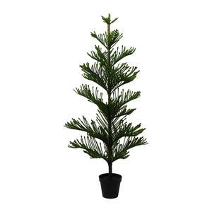 Kunstpflanze Araucarienbaum, ca. 175cm