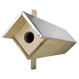 Steinkautzkasten Best for Birds
