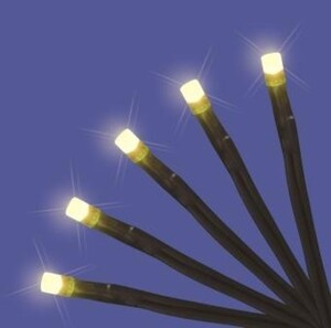 """TrendLine LED Lichterkette mit 10 LED """"warmweiß, für den Innenbereich"""""""