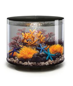biOrb® Aquarium TUBE 35 LED