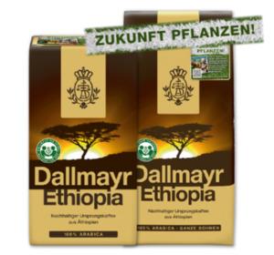 DALLMAYR Ethiopia Kaffee