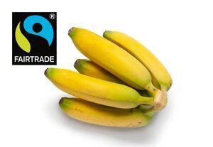 GUT bio Fairtrade Bio-Bananen