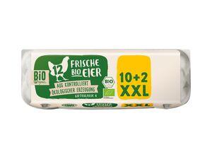 Frische Bio-Eier XXL-Packung