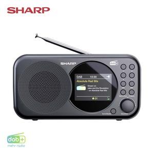 DAB+-Radio DR-P320 · Tuner für DAB+, DAB und FM mit RDS · Alarm-/Schlummer-Funktion · USB- oder Batteriebetrieb  *Logo: DAB_Plus_2017 *UVP: 54,95*