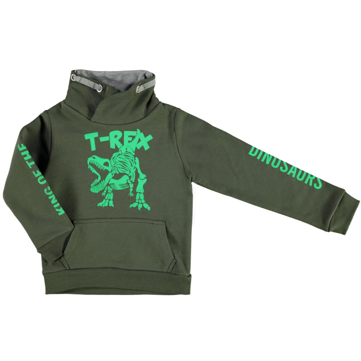 Bild 1 von Jungen Sweatshirt mit Dinofrontdruck