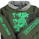 Bild 3 von Jungen Sweatshirt mit Dinofrontdruck
