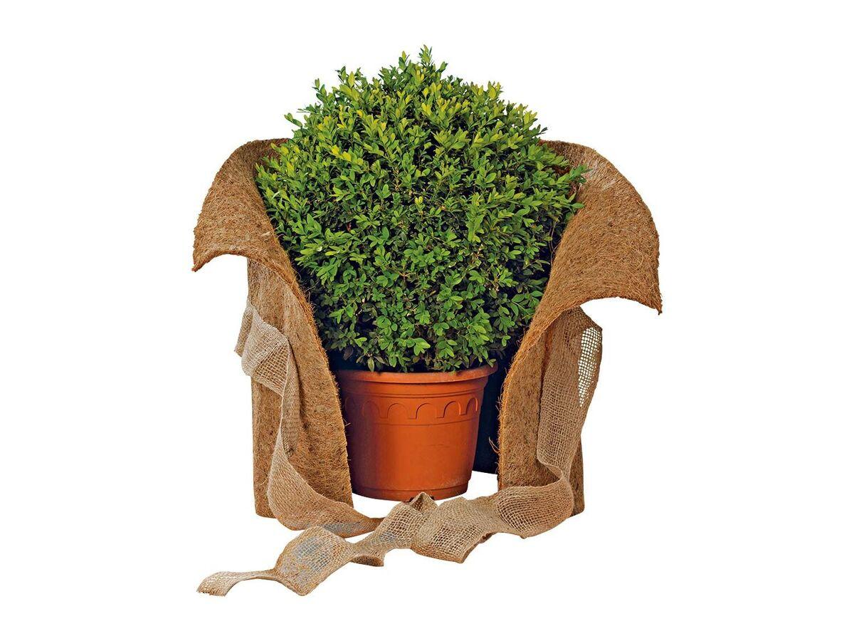 Bild 4 von FLORABEST Pflanzenschutz