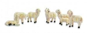 Riffelmacher Schafe versch. Sorten 2-3 cm, 6 Stück