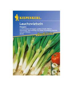 Kiepenkerl Saatgut Lauchzwiebeln 'Negaro'
