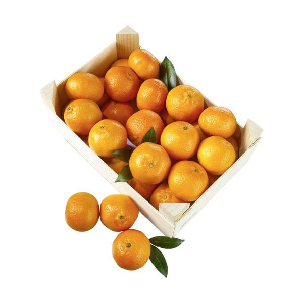 Spanien Clementinen Kennzeichnung siehe Etikett, jede 2,3-kg-Kiste