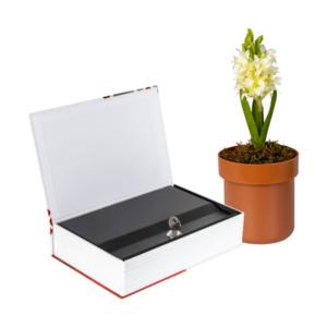 Honeywell Bücher- / Blumentopfsafe