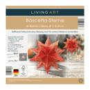Bild 4 von LIVING ART     Bascetta Sterne