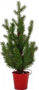 Kaeminkg künstlicher Minibaum mit Beleuchtung Höhe: 45 cm