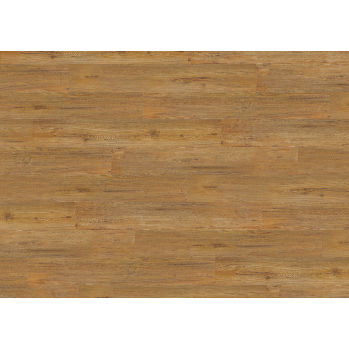 Bild 1 von D-c-floor Vinylboden 'Rigid' Golden Oak 4 mm