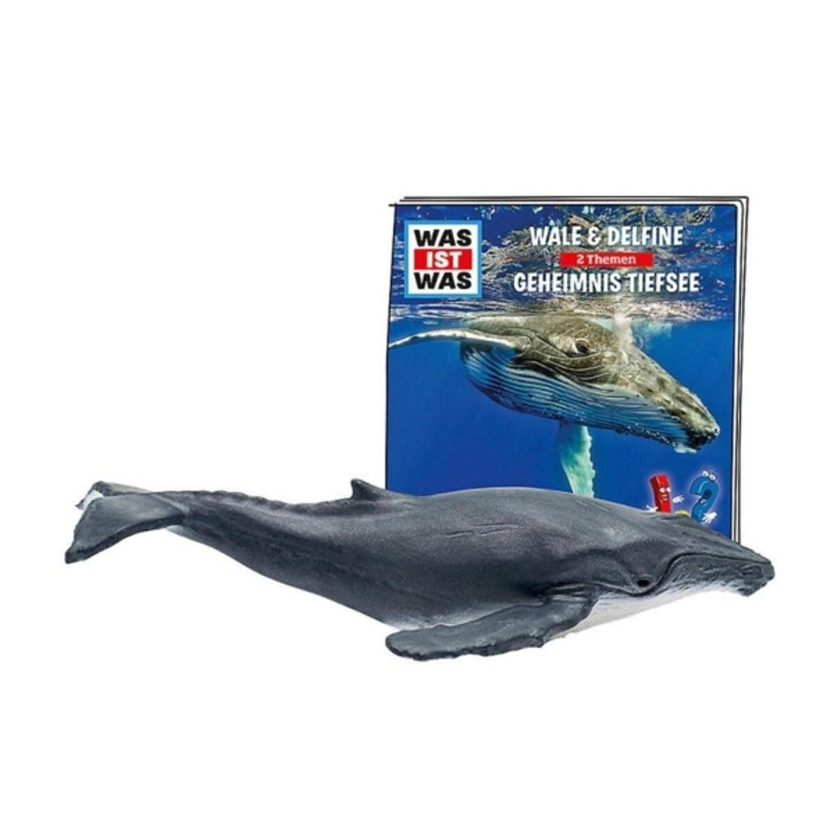 Bild 2 von Tonies Figur Was ist Was Wale & Delfine: Geheimnisse Tiefsee