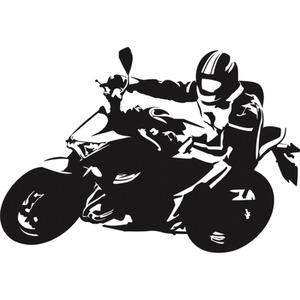 POLO Aufkleber Nakedbike 8 x 5,5 cm schwarz