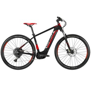 Whistle E-Mountainbike B-Race S ,  29 Zoll 12-Gang, schwarz/weiß/rot